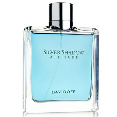 Davidoff Silver Shadow Altitude EDT 100ml Erkek Parfüm