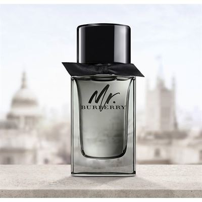 burberry-mr.-burberry-edt-erkekparfumu.jpg