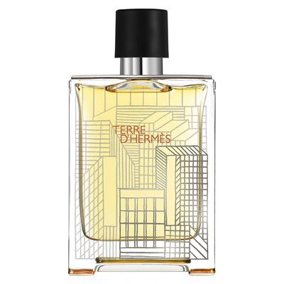 Hermes Terre D Hermes H Bottle Limited EDT 100ml Erkek Parfüm