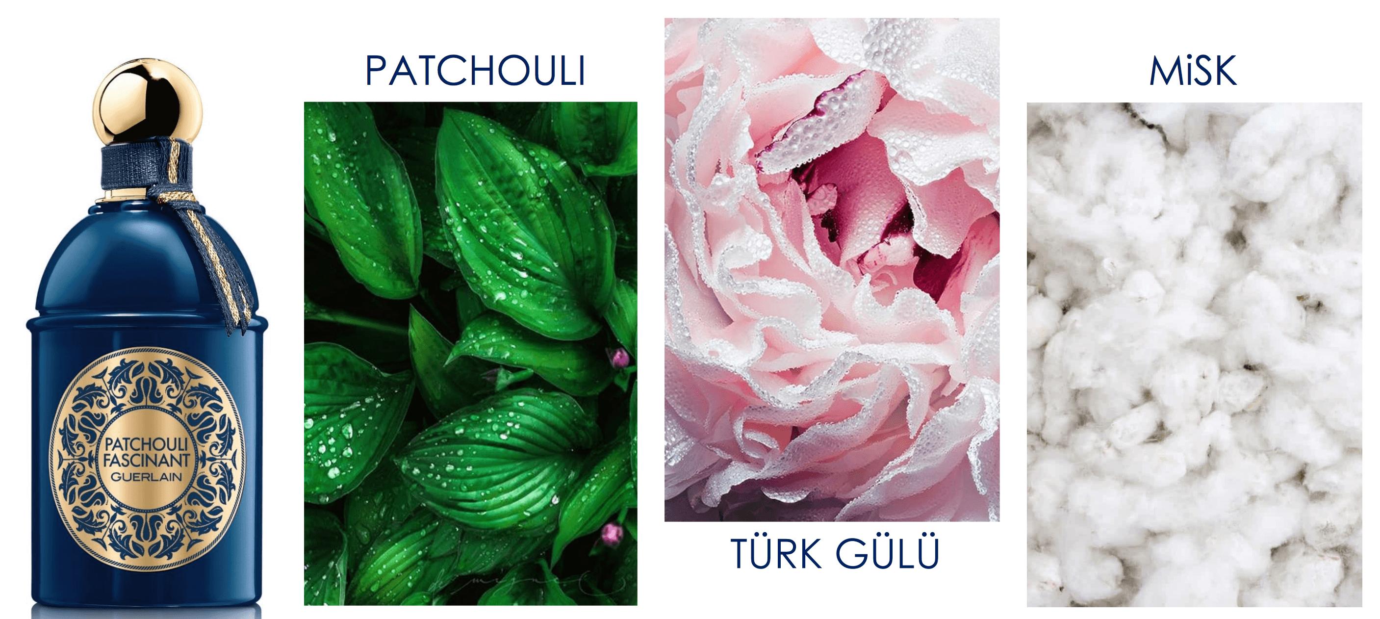 Guerlain Patchouli